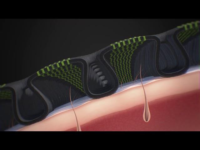 X-Bionic/X-Socks Imagefilm