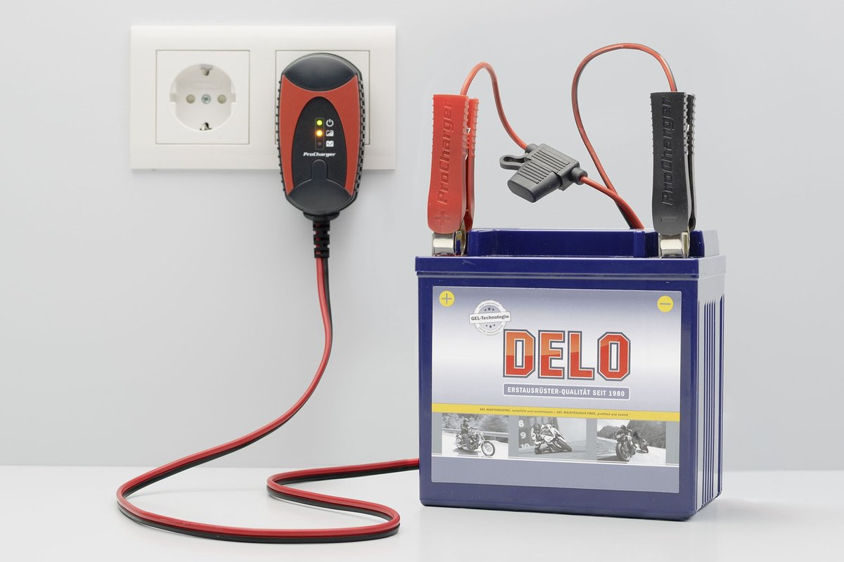 Fig.1 –Simple automatic charger for winter storage: ProCharger 600