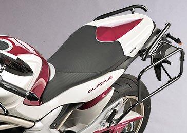 suzuki sfv 650 gladius transformation spéciale louis